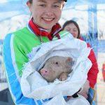 У абсолютной победительницы среди женщин на дистанции 5 км Карины Талменевой (Екатеринбург) главный приз – живой поросёнок.