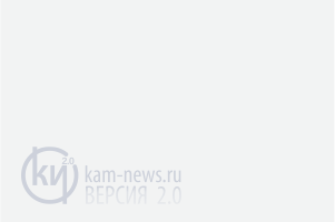 «Камышловские известия» № 8 от 27 января 2011 г.
