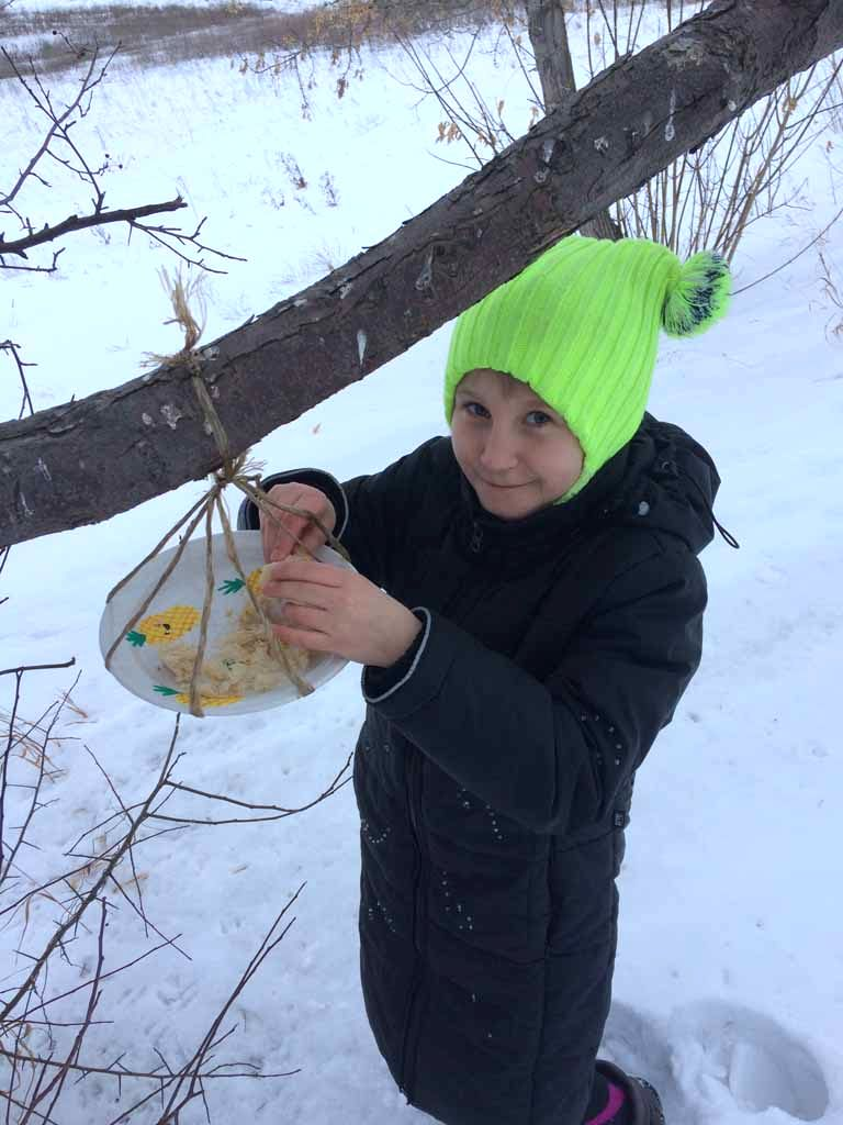 «С Дианой Говиной мы сделали эскиз кормушки и принялись за работу. Обвили тарелку крепкой веревкой, закрепили, и повесили на дерево. Наполнили кормушку и сразу прилетели голодные воробьи и снегири». К.В. Писцова.