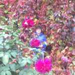 Елена Бурухина.пишет: «Моё.любимое.увлечение – цветы. Вот уже 30 лет я выращиваю и ухажи-ваю за цветами. Первые мной посаженные цветы – гладиолусы. А сейчас у меня саду, во дворе, в огороде много разных.видов цветов. С весны до глубокой осени благоухают разные виды – тюльпа-ны, петунии, бархатцы, лилии, астры, циннии, настурции, гладиолусы, георгины. А.чудо, которое я.вырастила – девичий.виноград, в этом году он уже закрывает всю лицевую сторону моего дома.
