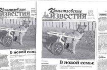 «Камышловские известия» № 136 от 21 октября 2017 года