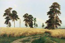 Клад елабужского леса
