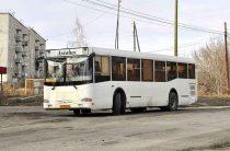 Внимание на автобусы