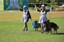 Для собак и их хозяев (фото)