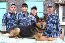На службу – с собакой