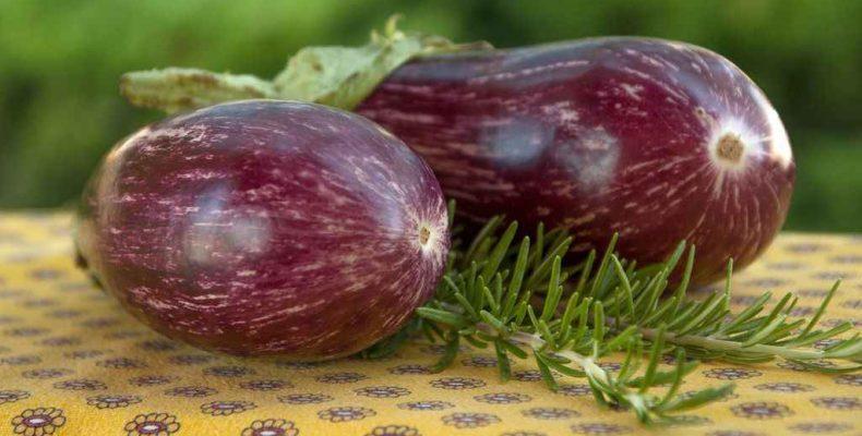 Зелёные операции дают богатый урожай