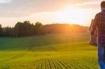Начинающим фермерам