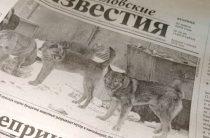 Газета в электронном виде