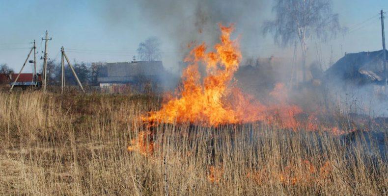 Пожар ликвидировали сотрудники колонии