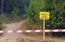 Леса патрулируют