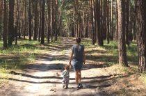 И в лесу есть правила