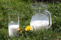 Молочный дозор