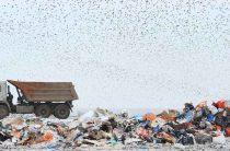 Объёмы мусора возрастают