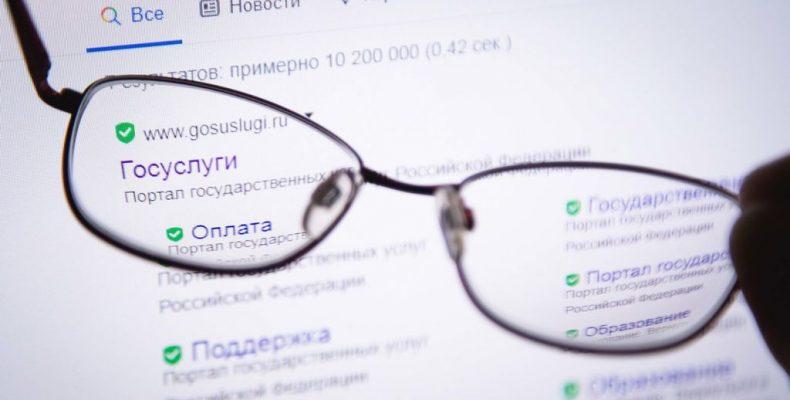 Пройти перепись самостоятельно сможет каждый россиянин