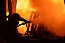В пожаре погибли люди и животные