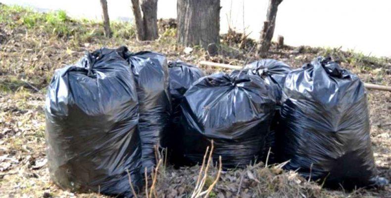 Выдадут пакеты для мусора