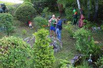 Парк «Тольского» периода (фото)