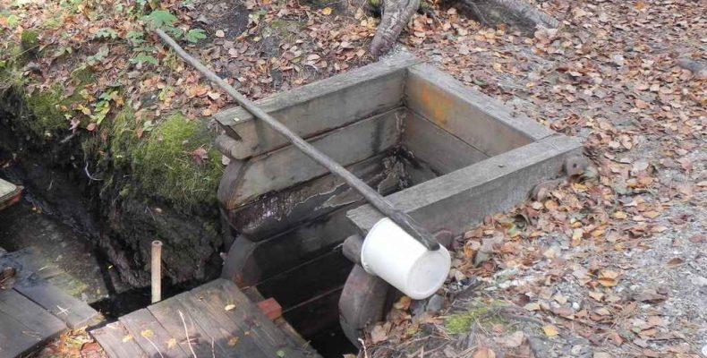 Родниковую воду пить можно