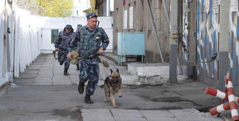 «Мы с далёких петровских времён защищаем российский закон!»