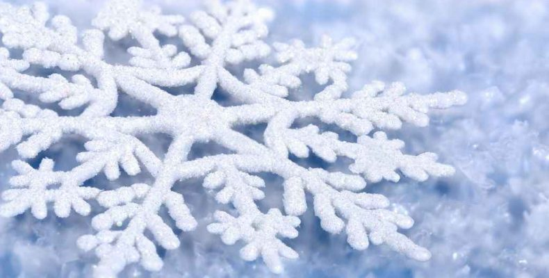 «День снега» на кордоне Бамбуковском и в Октябрьском
