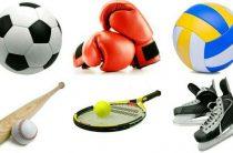 Спортвесточки