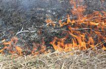 Трава продолжает гореть
